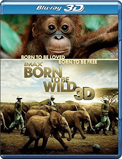 Born to Be Wild 3D Online 2011